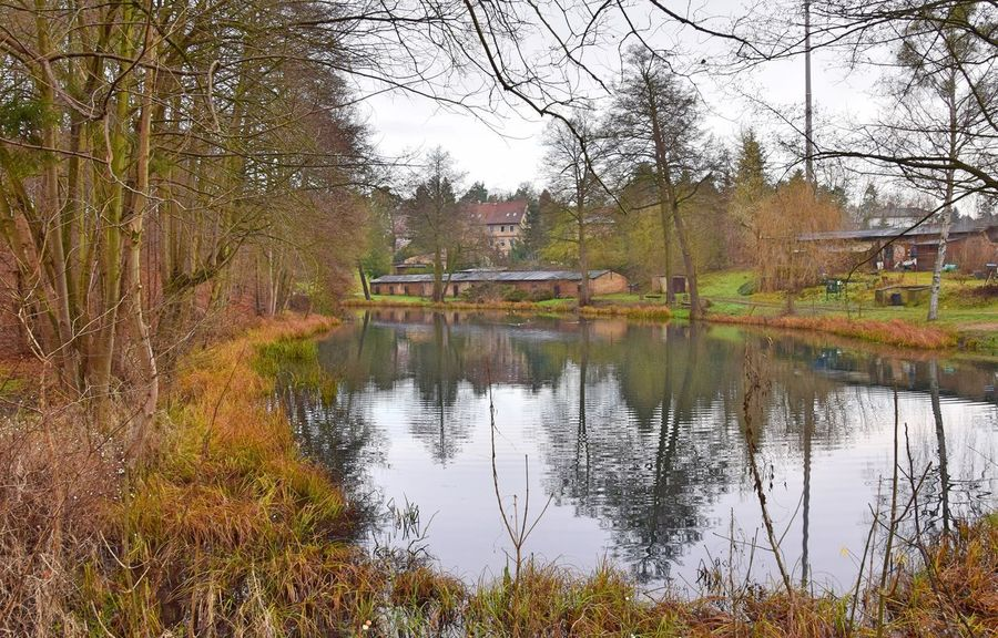 Schwärzetal Spechthausen Architecture Autumn Bare Tree Beauty In Nature Branch Building Exterior Built Structure Day Grass Lake Nature No People Outdoors Reflection Scenics Sky Tranquil Scene Tranquility Tree Water