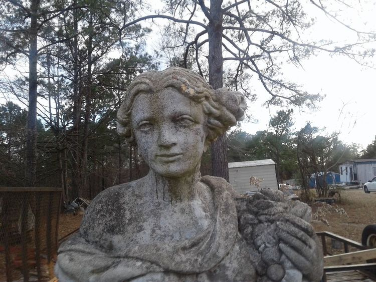 This scares me at night😐but i thought it would please some people🙂 Tree Statue Human Representation Sculpture Close-up Outdoors No People Sky Day Alabama Outdoors Beauty In Nature