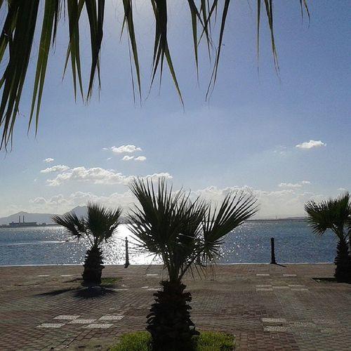 Tunisie Lac_de_Tunis