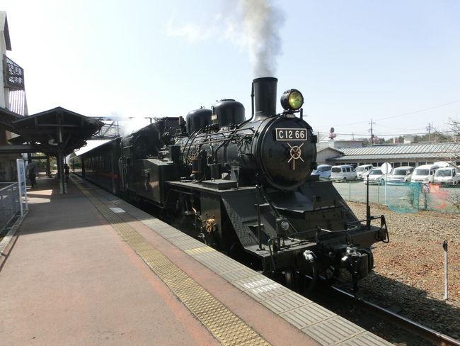 SL Steam Steam Locomotive 真岡鉄道sl 蒸気機関車