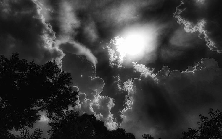 EyeEm Selects Storm Dramatic Sky Weather Night Tree Thunderstorm No People
