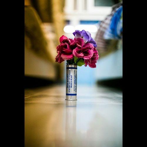 Teargas Bomb Flowers Creativity revolution memories