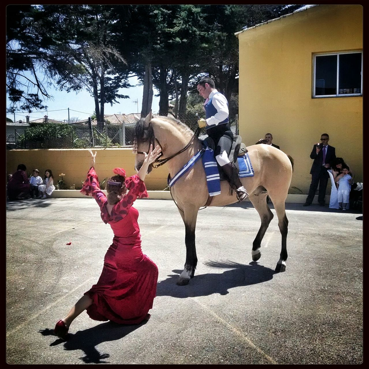 real people, domestic animals, horse, mammal, men, horseback riding, day, outdoors, full length, lifestyles, women, building exterior, tree, adult, people