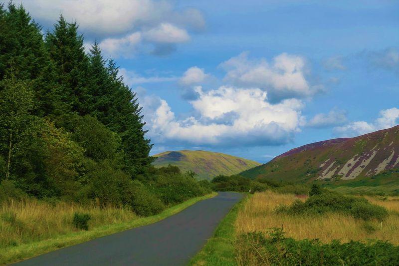 The road from Machrie Arran  Brodick BrodickCastle Castle Hills Hillwalking Lochranza Scotland Scottish Whisky Cask Distillery Heather Hill Island Isleofarran
