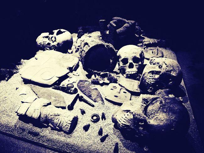 Museo Del Templo Mayor Mexico City Museum Skulls