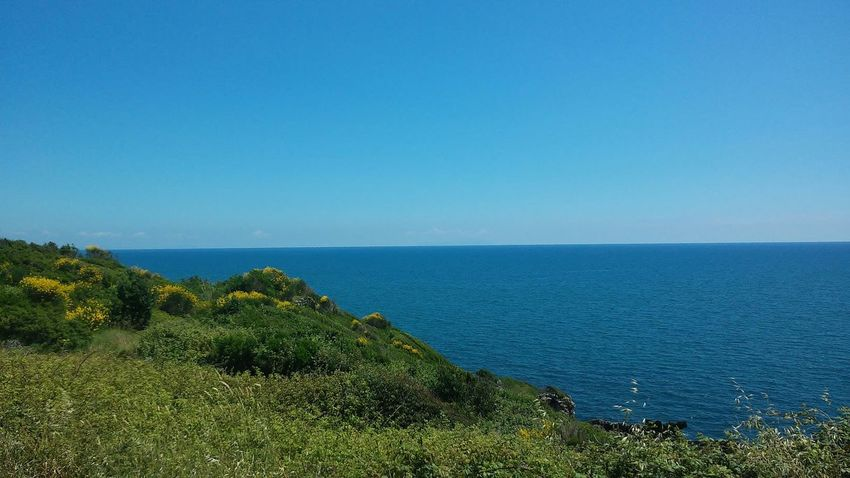 Blue Sea Tranquil Scene Horizon Over Water Water Beauty In Nature Seascape Green Color Non-urban Scene Tranquility Plant Calm Idyllic Majestic Clear Sky Scenics Grass Formia Outdoors Green Beautiful
