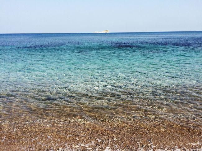 Sea Isola D'Elba  Italy Mare