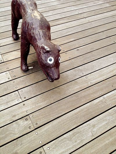 One Animal Animal Themes Wood - Material One Person Pig Mammal Low Section Day Outdoors People
