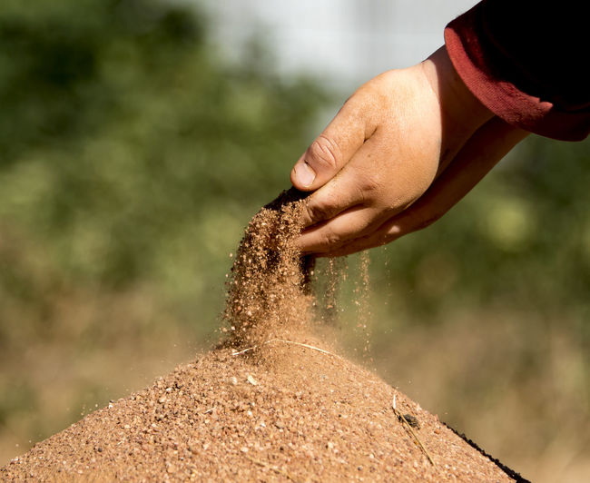 Cropped image of hand holding sand outdoors