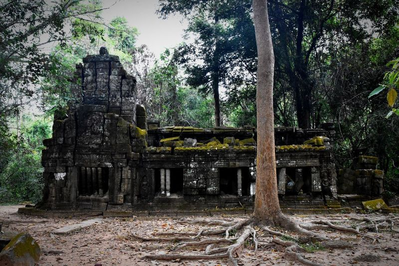 Old temple against trees and building
