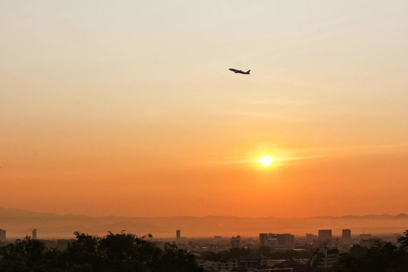 Silhouette bird flying over city during sunset