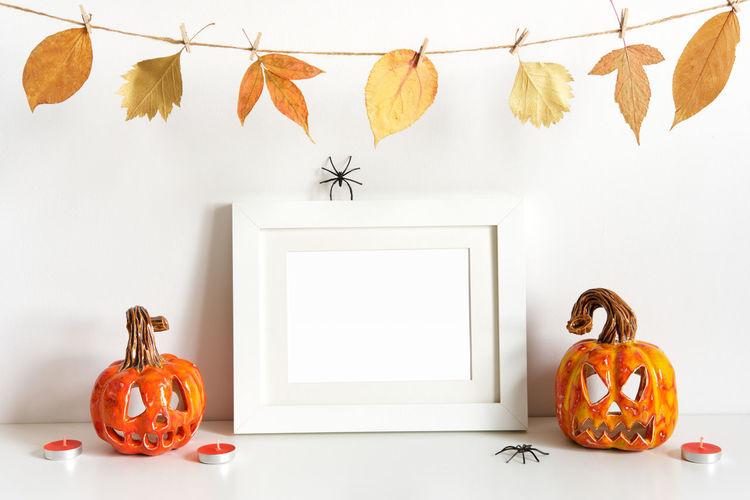 Various pumpkins on table
