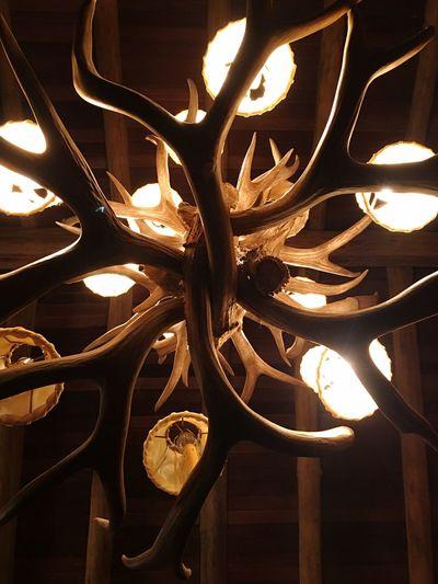 Illuminated Close-up Indoors  Light Bulb No People Cealing Hanging Light