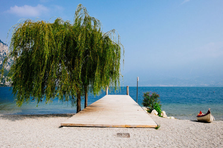 Weeping willow tree by pier over sea against sky