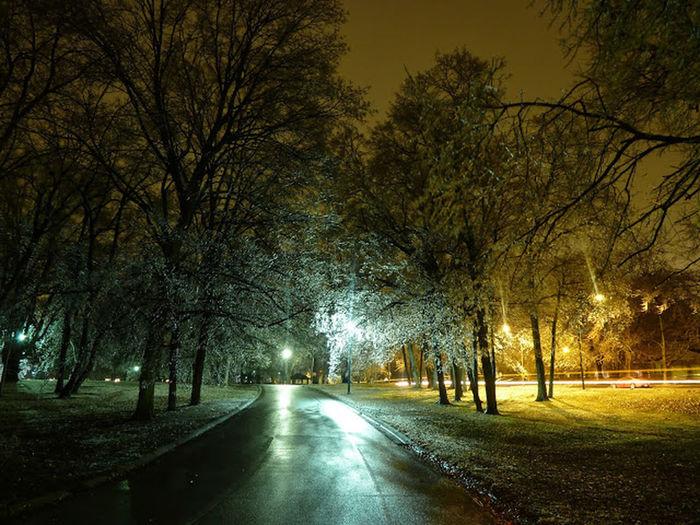 Washington Park Springfield Illinois