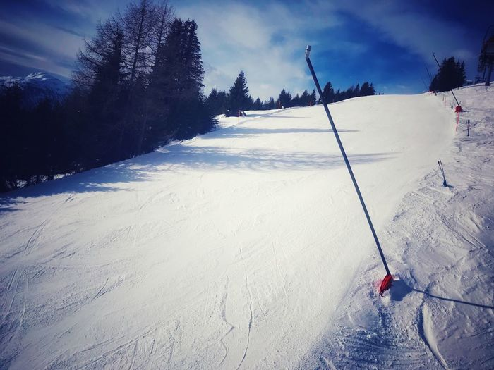 Ready to shred Tree Plant Nature Sky Land Sport Snow Cold Temperature Day Winter Winter Sport Lifestyles Outdoors Mountain Skiing