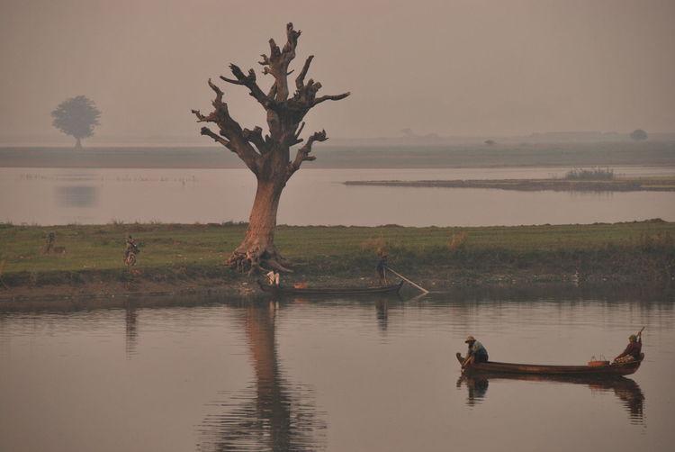 Baum Boat Calm