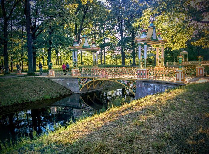 Saint-Petersburg Pushkin
