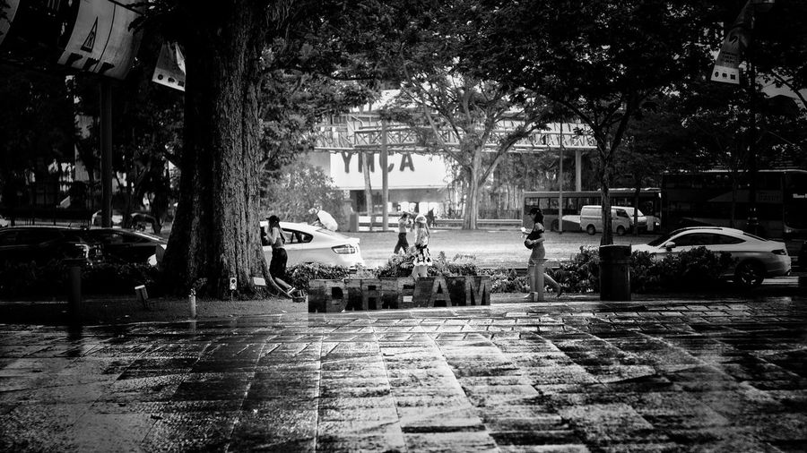 """Tree Built Structure Architecture Building Exterior Outdoors Real People Night City Large Group Of People Nature Water People Singaporestreetphotography LeicaSL Sober Insanity EyeEm Blackandwhite Photography Rainy Days Visual Stories Dreams CATHAY THEATRE This Is Home EyeEmStreetshots Snapseed """"Dream"""""""