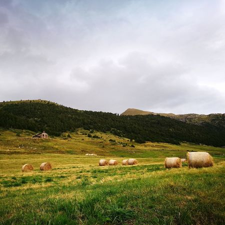 Field Rural Scene Landscape Outdoors Nature Beauty In Nature No People Storm Cloud Andorra🇦🇩 Lost In The Landscape EyeEmNewHere Perspectives On Nature