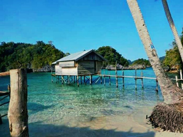 Beach Island Home On The Sea The Great Outdoors - 2016 EyeEm Awards EyeEm Indonesia Sulawesi