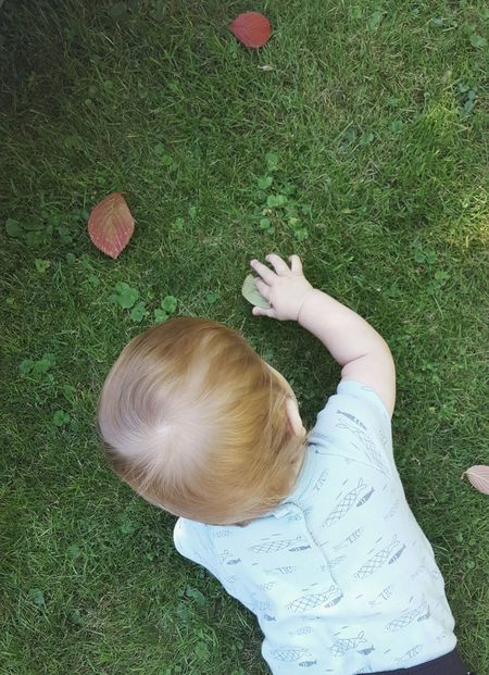 This is how it should be for every child... Babyboy Toddler  Crawling Exploring Baby Hand Holding A Leaf Leaves Lying On The Grass Green Grass A Bird's Eye View Color Palette Peaceful Moment Beauty In Ordinary Things Light And Shadow Playing One With Nature The Color Of Sport Outdoors Garden Mommylife Mother And Son Growing Up Summer Experience Nature