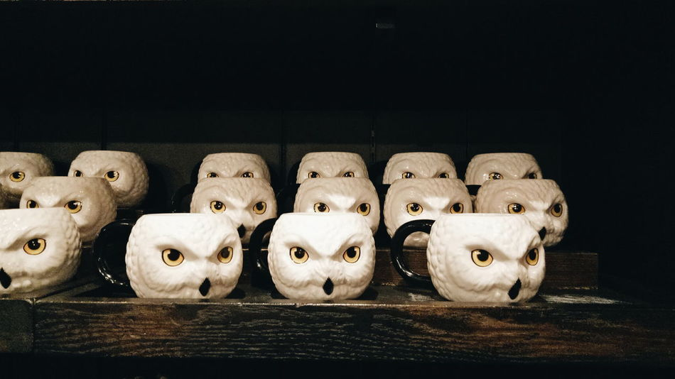 EyeEm Selects hedwig mugs In A Row Arrangement No People Black Background Indoors  Close-up Day Hedwig Mug Harry Potter Owl USJ Magic