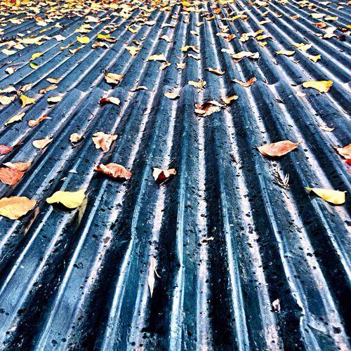 Roofing rains