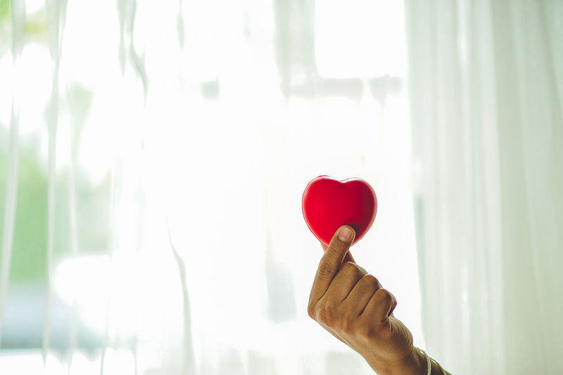 Person Holding Red Heart Shape Against Window At Home