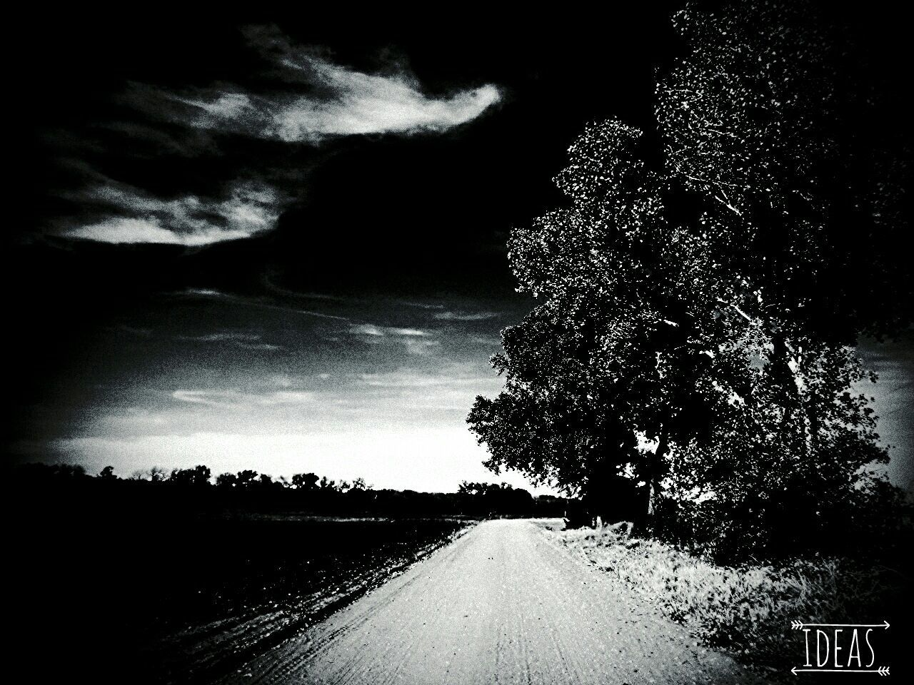 the way forward, road, tree, nature, tranquil scene, landscape, no people, scenics, transportation, sky, tranquility, beauty in nature, cloud - sky, day, outdoors