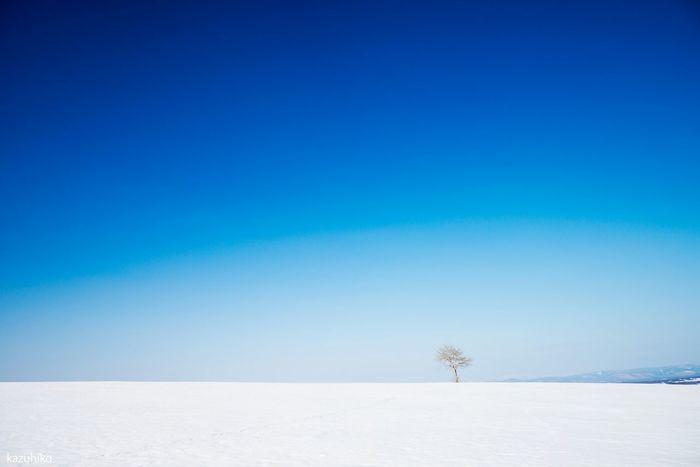Hokkaido Japan Biei 私の好きな場所