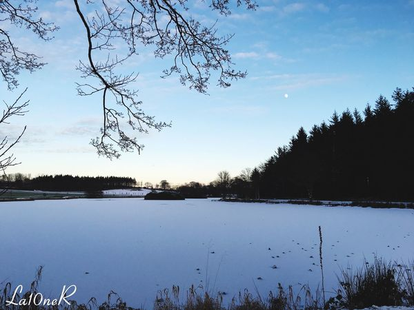 Lights At Dusk Duskview Fading Light Winter Loving Life  Taking Photos Learn & Shoot: Simplicity Loving Photography EyeEm Best Shots First Eyeem Photo EyeEm Nature Lover Nature Photography Eye4photography  Frozen Lake Loving Nature Under The Freezing Temperature Subzero.