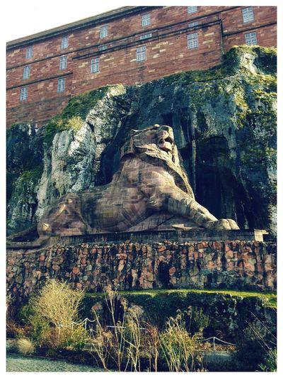 Le lion de Belfort Lion Belfort Citadelle De Belfort