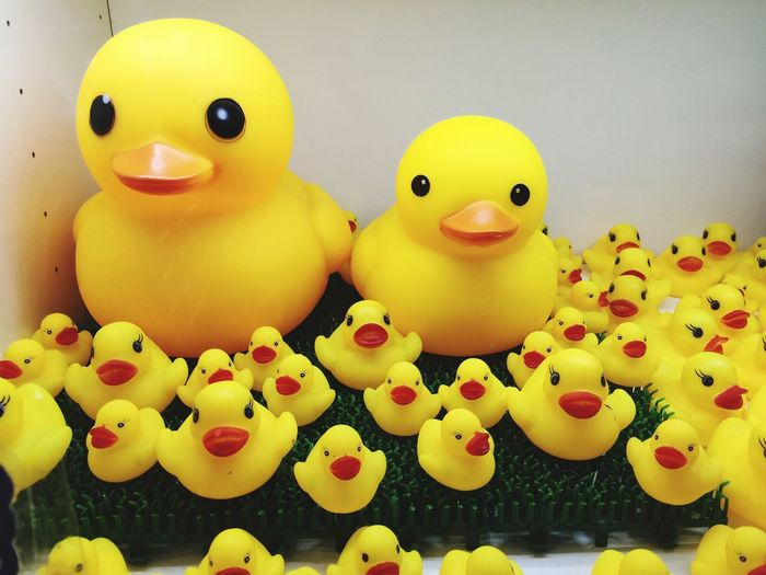 High Angle View Of Rubber Ducks And Ducklings On Table