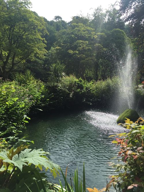 Beauty In Nature Day Falling Water Flowing Flowing Water Forest Green Color Growth Lake Land Leaf Motion Nature No People Outdoors Plant Plant Part Rainforest Scenics - Nature Tranquil Scene Tranquility Tree Water Waterfall