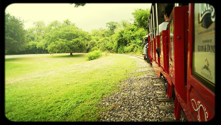 Train Ride EyeEm Best Shots Riding The Train Belong Anywhere Lost In The Landscape