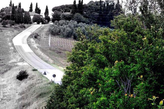 Tuscany Countryside Countryside Campagnatoscana