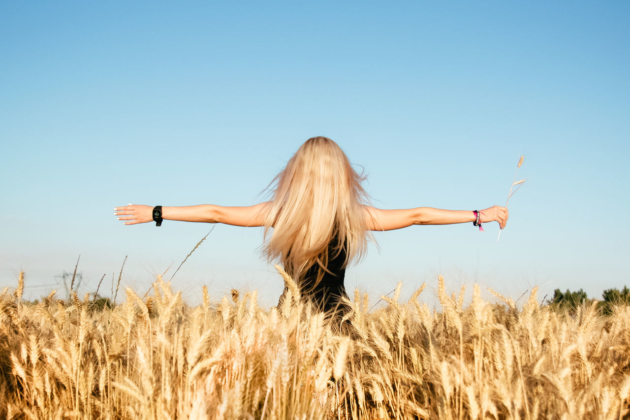 field, clear sky, one person, nature, rear view, real people, standing, long hair, lifestyles, growth, blue, outdoors, leisure activity, day, wheat, cereal plant, sky, beauty in nature, young adult, people