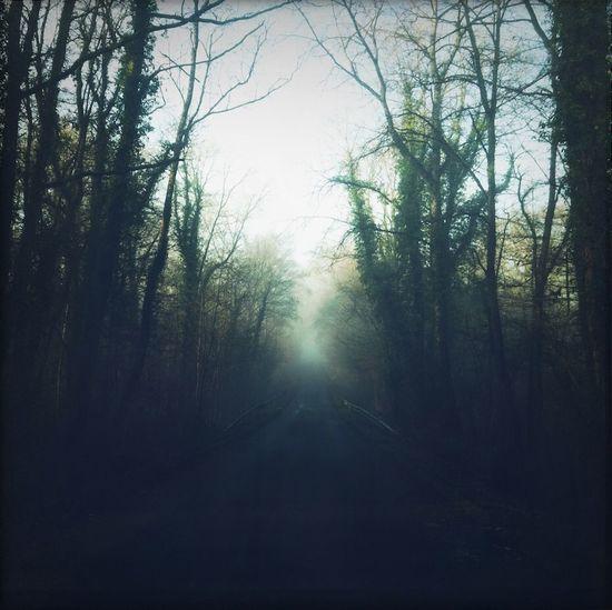 Melancholic Landscapes Normandy Landing