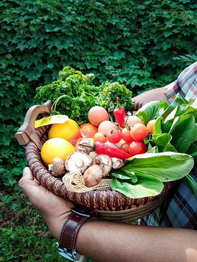 Grocer Vegetable Groceries Freshvegetables Fresh Green Fruit Farmer Market Various Squash - Vegetable First Eyeem Photo