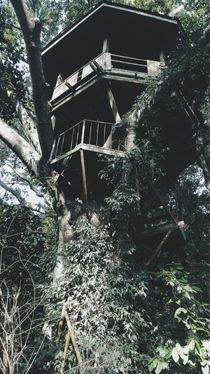tree house THARAWSHOT