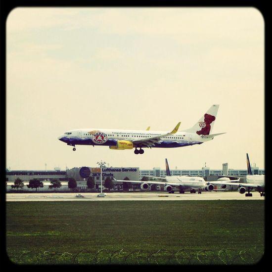 Baerenmarke Boeing Landing Airplane