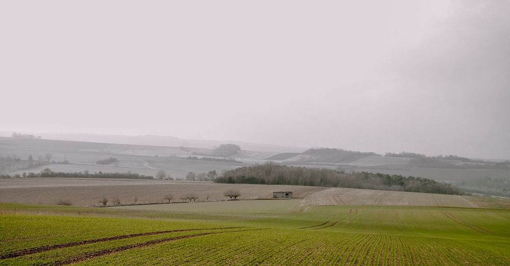 Paysage de l'yonne Agriculture Landscape Rural Scene Nature Fog Tranquil Scene Outdoors No People Beauty In Nature Sky Day Igersyonne