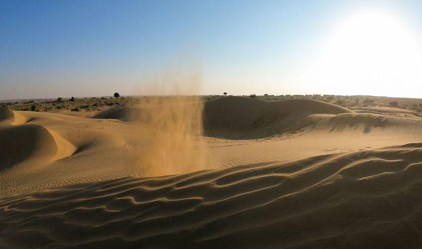 Desert India Sheepherd Travel Arid Climate Beauty In Nature Camel Desert Jaisalmer Landscape Nature No People Obrigado Outdoors Rajasthan Sand Sand Dune Sheep Sunlight Sunset Thar Desert