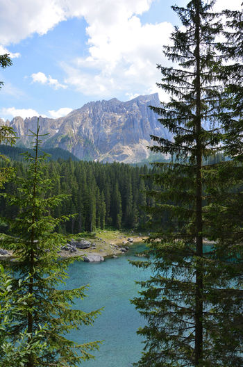 Karersee / Lago di Carezza, South Tirol, Italy Nature Lake Carezza Karersee Lago Di Carezza Italy Südtirol Tirol  Tree Mountain Beauty In Nature Water Plant Sky Growth Waterfront Lake No People Cloud - Sky Environment Day Tranquility Reflection Outdoors Mountain Range Mountain Peak