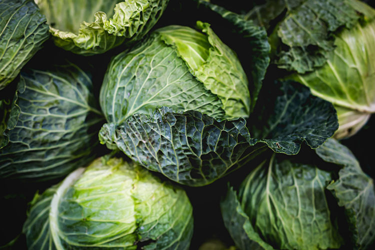 Raw Fresh green cabbage texture and background. Top view Agriculture Freshness Green Leafs Nature Plant Salad Vegetarian Vegetarian Food Background Cabbage Close Up Close-up Food Fresh Healthy Lettuce Lettuce Salad Nutrition Organic Organic Food Salad Vegetable Texture Vegetable Vegetables