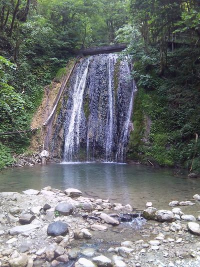 Сочи водопад 33 водопада экскурсия Природа отдых Россия Water Tree Forest Motion First Eyeem Photo