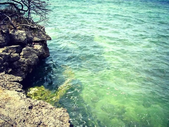 Cliff Day Dominican Republic Green Sea Nature Ocean Outdoors Rock Sea Seaside Water