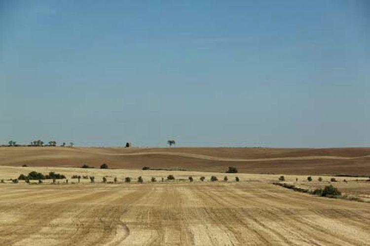 En ciertas zonas de La Rioja el paisaje se torna minimalista lo cual lo hace interesante por sus lineas y contornos infinitos a lo largo de la carretera. EyeEm Best Shots Eye4photography  España Larioja Vscocam VSCO EyeEm