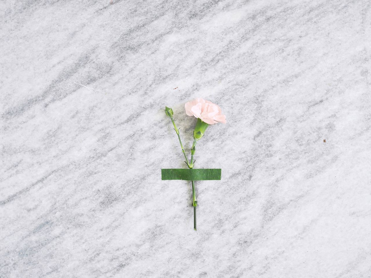 High angle view of flower on marble